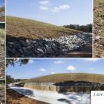 Judy Holt Reserve