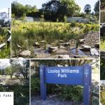 Louisa Williams Park